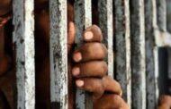 मुंबई के भायखला जेल में कोविड प्रकोप - 6 बच्चों समेत 39 लोग हुए कोरोना संक्रमित