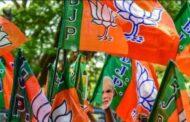 महाराष्ट्र में बीजेपी का नया गठबंधन - पंचायत उपचुनाव में मनसे बनी सहयोगी